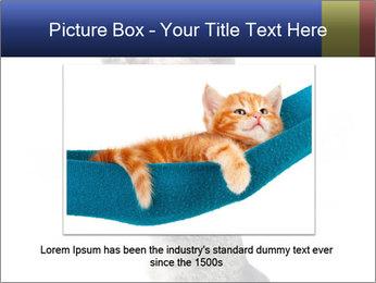 Active Cat PowerPoint Template - Slide 15