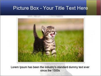 Active Cat PowerPoint Template - Slide 16