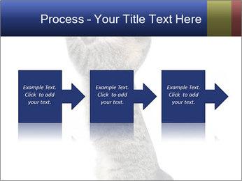 Active Cat PowerPoint Template - Slide 88
