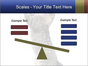 Active Cat PowerPoint Template - Slide 89