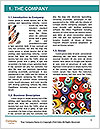 0000063690 Word Template - Page 3