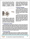 0000063690 Word Template - Page 4