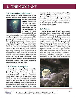 0000063692 Word Template - Page 3