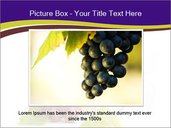The Best Wine PowerPoint Templates - Slide 15
