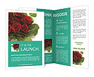 0000063702 Brochure Templates