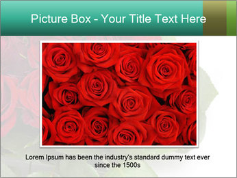 Elegant Red Rose Bouquet PowerPoint Template - Slide 15