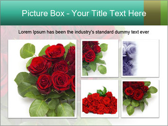 Elegant Red Rose Bouquet PowerPoint Template - Slide 19