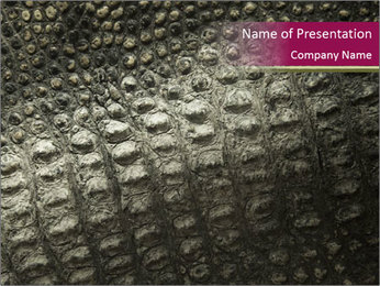 Grey Crocodile Leather PowerPoint Template - Slide 1
