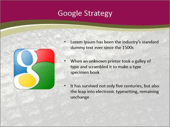 Grey Crocodile Leather PowerPoint Template - Slide 10