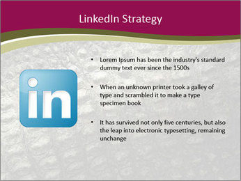 Grey Crocodile Leather PowerPoint Template - Slide 12