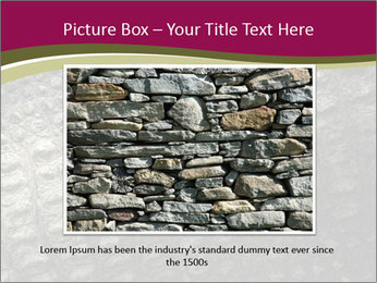 Grey Crocodile Leather PowerPoint Template - Slide 15