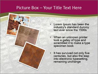 Grey Crocodile Leather PowerPoint Template - Slide 17