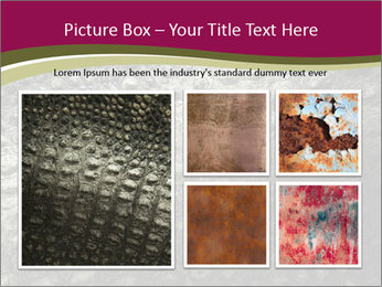 Grey Crocodile Leather PowerPoint Template - Slide 19