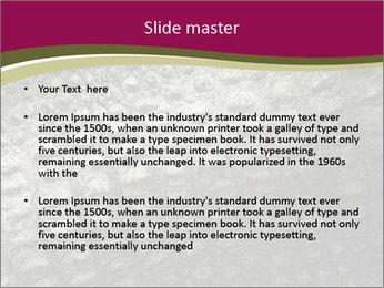 Grey Crocodile Leather PowerPoint Template - Slide 2