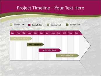 Grey Crocodile Leather PowerPoint Template - Slide 25
