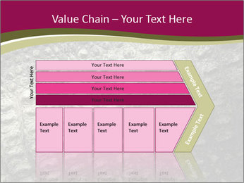 Grey Crocodile Leather PowerPoint Template - Slide 27