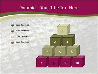 Grey Crocodile Leather PowerPoint Template - Slide 31