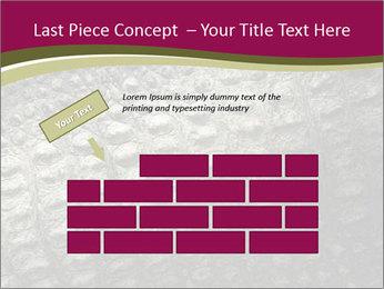 Grey Crocodile Leather PowerPoint Template - Slide 46