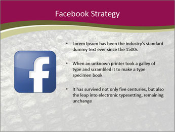 Grey Crocodile Leather PowerPoint Template - Slide 6
