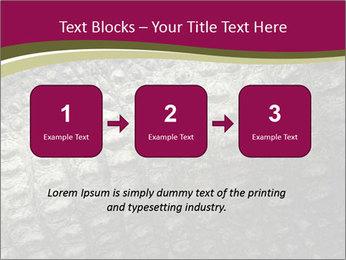 Grey Crocodile Leather PowerPoint Template - Slide 71