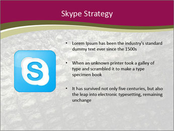 Grey Crocodile Leather PowerPoint Template - Slide 8