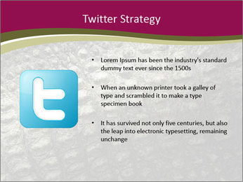 Grey Crocodile Leather PowerPoint Template - Slide 9