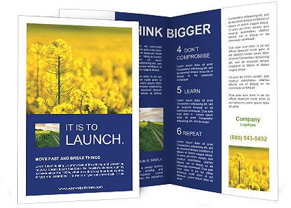 0000063713 Brochure Template