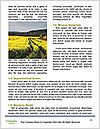 0000063713 Word Templates - Page 4