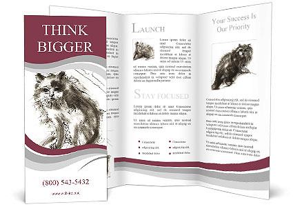 0000063716 Brochure Template