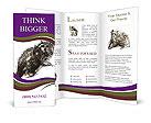 0000063717 Brochure Templates