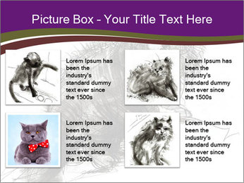 Cat Drawing PowerPoint Template - Slide 14