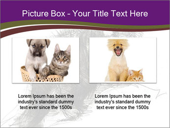 Cat Drawing PowerPoint Template - Slide 18
