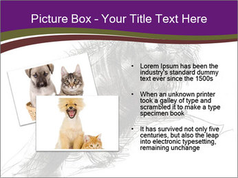 Cat Drawing PowerPoint Template - Slide 20