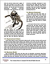 0000063718 Word Templates - Page 4