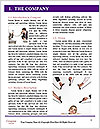 0000063735 Word Template - Page 3