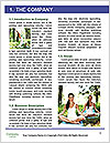 0000063741 Word Templates - Page 3