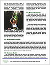 0000063741 Word Templates - Page 4