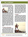0000063742 Word Template - Page 3