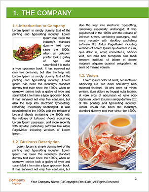 0000063745 Word Template - Page 3