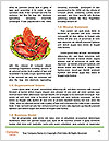 0000063745 Word Template - Page 4