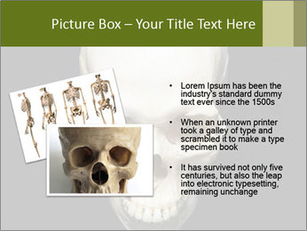 Scary Human Skull PowerPoint Template - Slide 20
