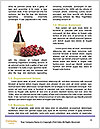 0000063756 Word Templates - Page 4