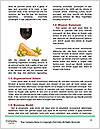 0000063757 Word Templates - Page 4