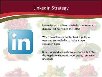 Catalogue of Berries PowerPoint Templates - Slide 12