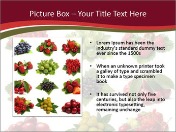 Catalogue of Berries PowerPoint Templates - Slide 13