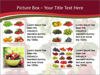 Catalogue of Berries PowerPoint Templates - Slide 14