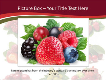 Catalogue of Berries PowerPoint Templates - Slide 16