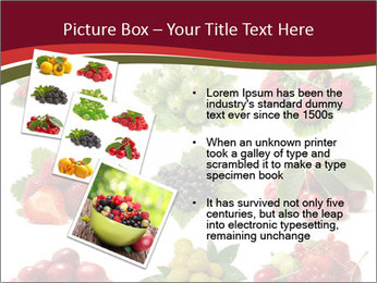 Catalogue of Berries PowerPoint Templates - Slide 17