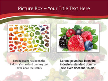 Catalogue of Berries PowerPoint Templates - Slide 18