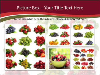 Catalogue of Berries PowerPoint Templates - Slide 19